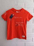ベルギー子供服 AMERICAN OUTFITTERS アメリカンアウトフィッターズ AO76 プリントTシャツ・カイトサーフィン