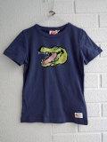 ベルギー子供服 AMERICAN OUTFITTERS アメリカンアウトフィッターズ AO76 ワニプリントTシャツ