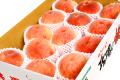 【お届け日指定不可】 秋田県産 JAかづの「北限の桃」 約5kg(13~18玉入)【出荷期間:9月上旬~9月下旬まで】