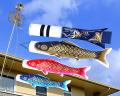 鯉のぼり,慶,スタンドセット