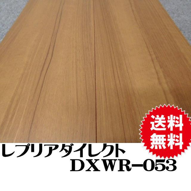 フロア DXWR-053
