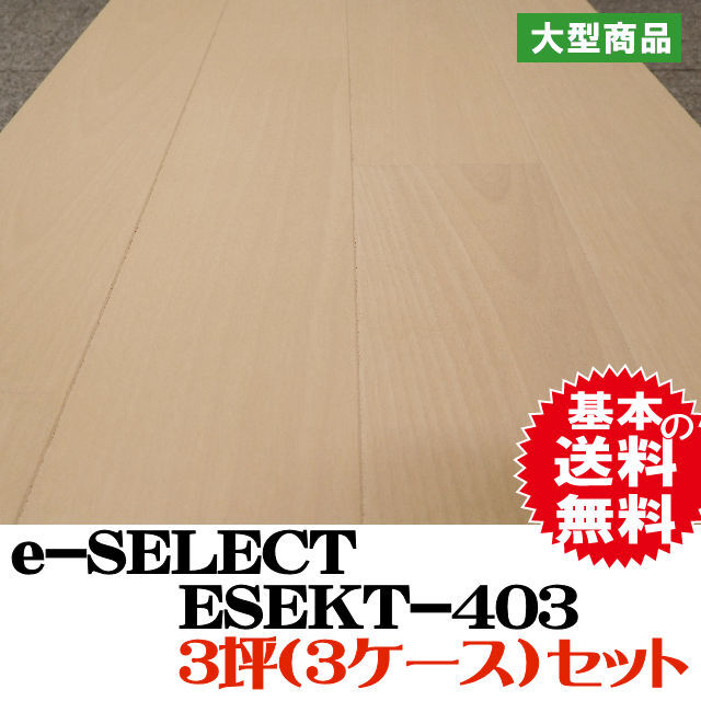 フロア e-SELECT  ESEKT-403