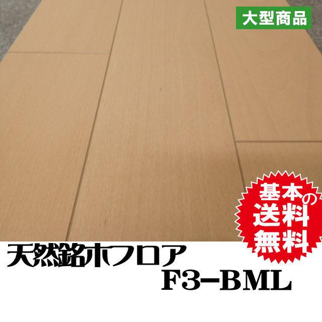 フロア F3-BML