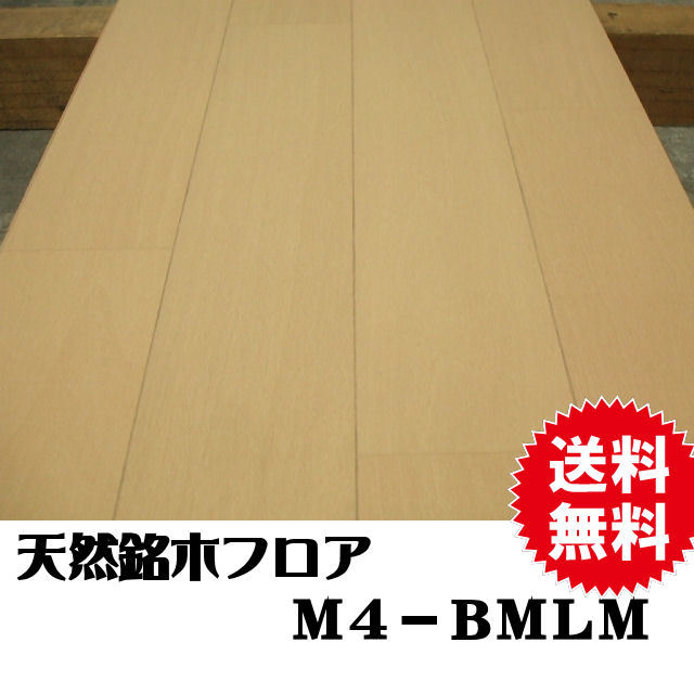 フロア M4-BMLM