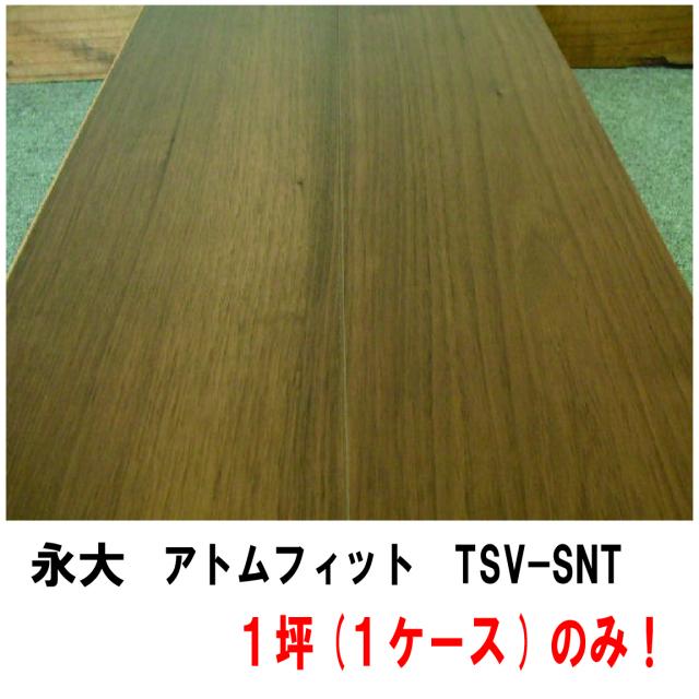 フロア TSV-SNT