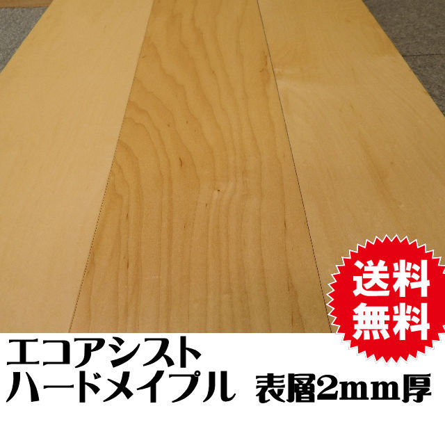 文教用フロア エコアシスト スクールフローリング ハードメープル クリア 表層2mm厚