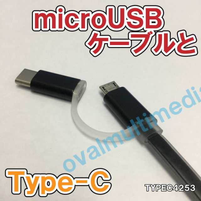 microUSBとType-Cの2 in 1