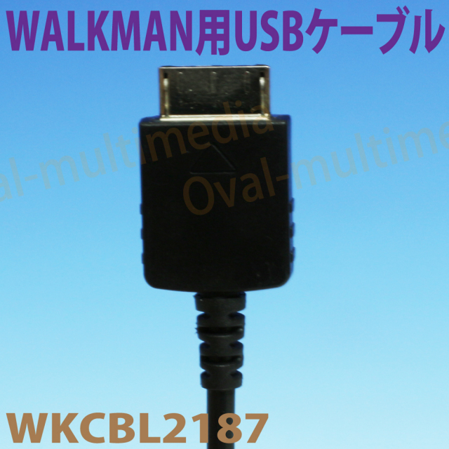 WALKMAN用USBケーブル1m