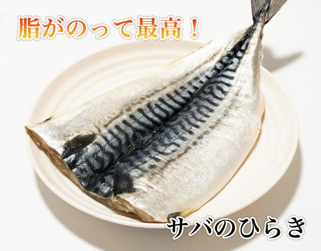 さばのひらき(うす塩味) 1枚   【鯖・とろさばの干物】