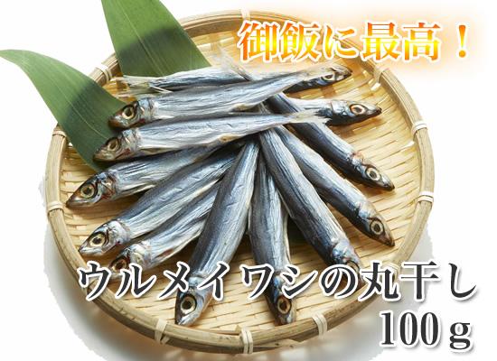 ウルメイワシの丸干し (大) 100g    【イワシの干物】