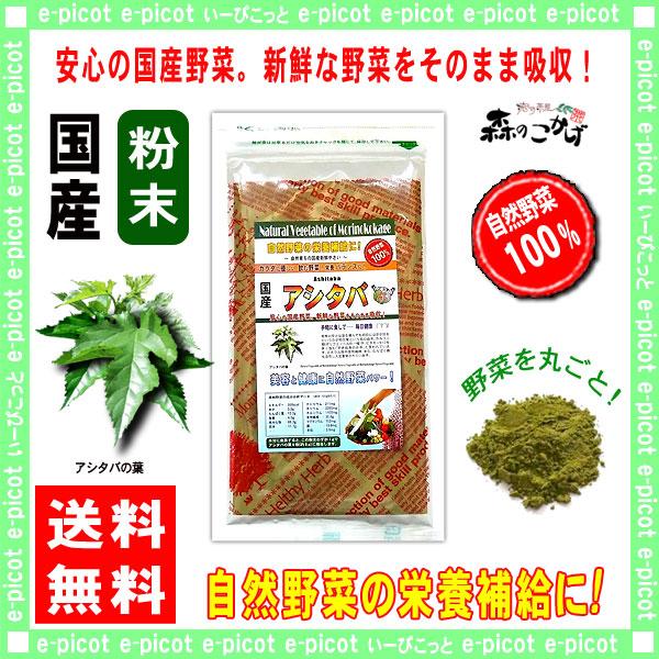 G【送料無料】 国産 アシタバ 粉末 (100g)[やさいパウダー100%] 野菜 粉末 (明日葉) あしたば