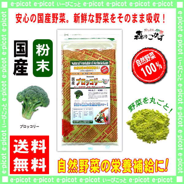 G【送料無料】 国産 ブロッコリー 粉末 (100g)[やさいパウダー100%] 野菜 粉末 (ぶろっこりー)