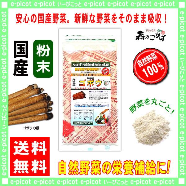【送料無料】 国産 ゴボウ 粉末 (100g)[やさいパウダー100%] 野菜 粉末 (牛蒡) ごぼう