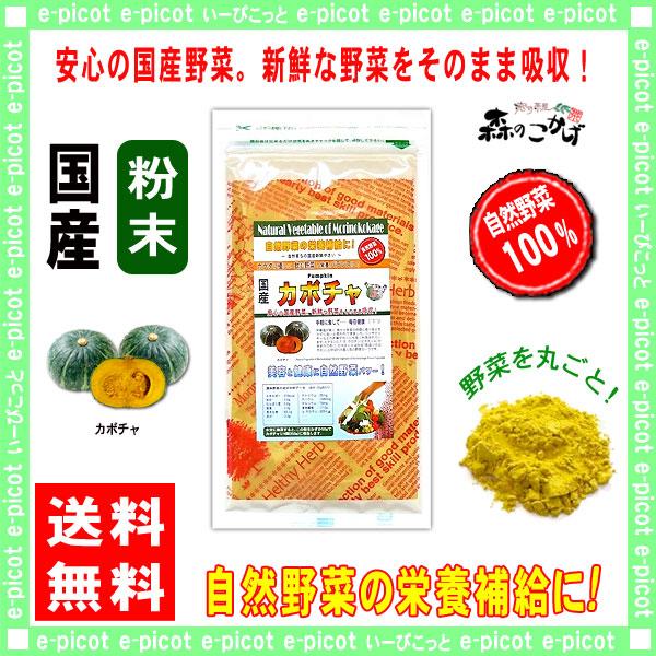 G【送料無料】 国産 カボチャ 粉末 (100g)[やさいパウダー100%] 野菜 粉末 (南瓜) かぼちゃ