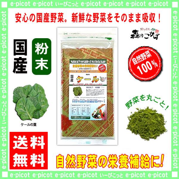 G【送料無料】 国産 ケール 粉末 (100g)[やさいパウダー100%] 野菜 粉末 (けーる)
