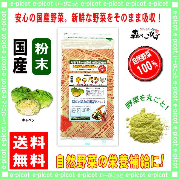 G【送料無料】 国産 キャベツ 粉末 (100g)[やさいパウダー100%] 野菜 粉末 (きゃべつ)