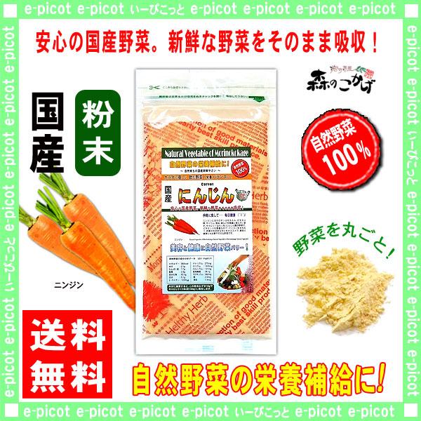 【送料無料】 国産 ニンジン 粉末 (100g)[やさいパウダー100%] 野菜 粉末 (人参) にんじん
