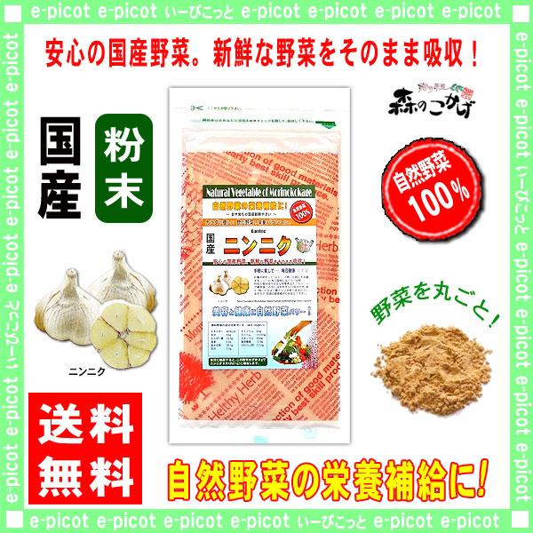 ■【送料無料】国産ニンニク粉末(100g)[やさいパウダー100%]野菜ジュースの素■国産野菜粉末(大蒜)にんにく