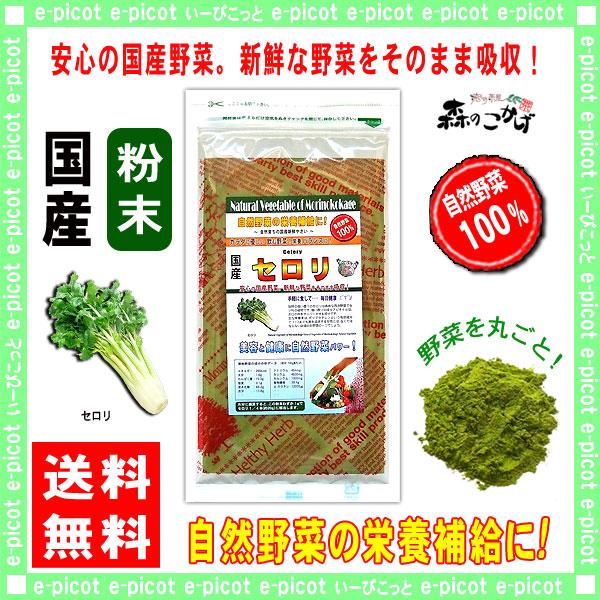 【送料無料】 国産 セロリ粉末 (50g 内容量変更)[やさいパウダー100%] 野菜粉末 (せろり)