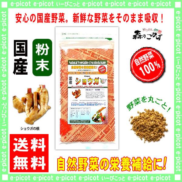 【送料無料】 国産 ショウガ  粉末 (100g)[やさいパウダー100%] 野菜 粉末 (生姜) しょうが ジンジャー