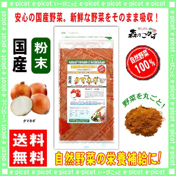 G【送料無料】 国産 タマネギ 粉末 (100g)[やさいパウダー100%] 野菜 粉末 (玉葱) たまねぎ