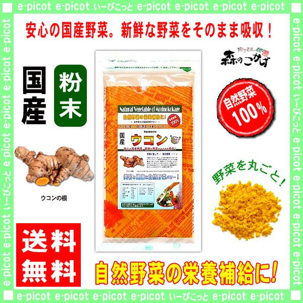 G【送料無料】 国産 ウコン 粉末 (50g 内容量変更)[やさいパウダー100%] 野菜 粉末 (うこん)