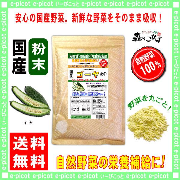 G1【送料無料】 国産 ゴーヤ 【粉末】 (300g) やさい パウダー 100% 野菜粉末 苦瓜 ニガウリ