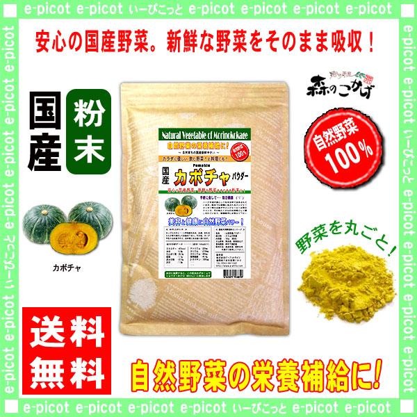 G1【送料無料】 国産 カボチャ 粉末 ★(300g)[やさいパウダー100%] 野菜 粉末 (南瓜) かぼちゃ