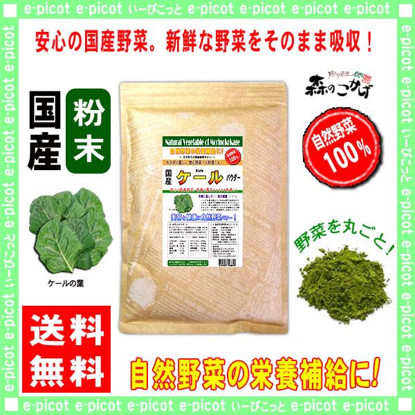 G1【送料無料】 国産 ケール 【粉末】 (300g) やさい パウダー 100% 野菜粉末 けーる