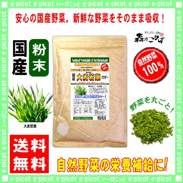 G1【送料無料】 国産 大麦若葉 粉末 ★(300g)[やさいパウダー100%] 野菜 粉末 (オオムギ若葉)