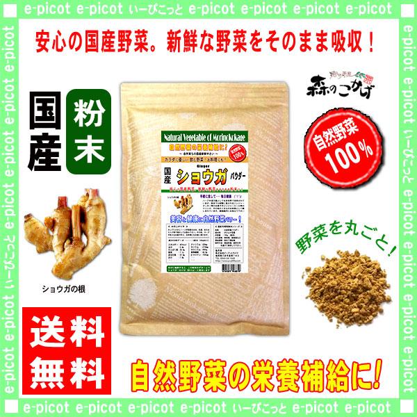 【送料無料】 国産 ショウガ 粉末 ★(200g 内容量変更)[やさいパウダー100%] 野菜 粉末 (生姜) しょうがジンジャー