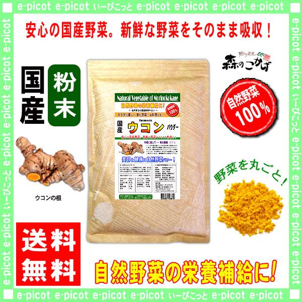 G1【送料無料】 国産 ウコン 【粉末】 (300g) やさい パウダー 100% 野菜粉末 うこん