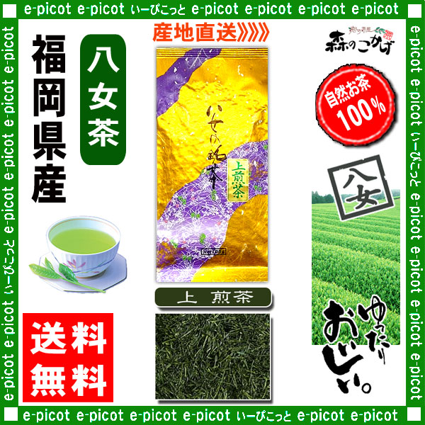Y【送料無料】 上 煎茶 ★(100g×2袋セット)≪八女茶≫ ◇ 福岡県-日本茶 -厳選の緑茶