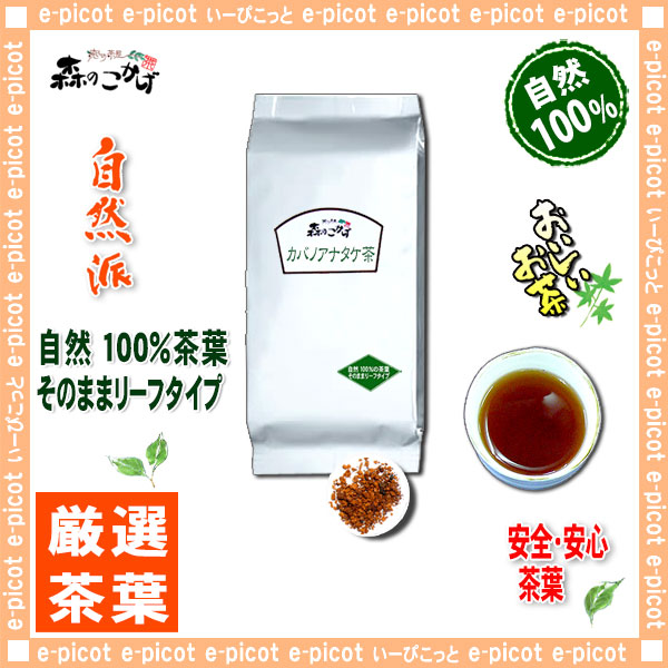 A3【業務用 健康茶】 カバノアナタケ茶 〔お徳用 500g 内容量変更〕 かばのあなたけ茶 ≪チャーガ≫