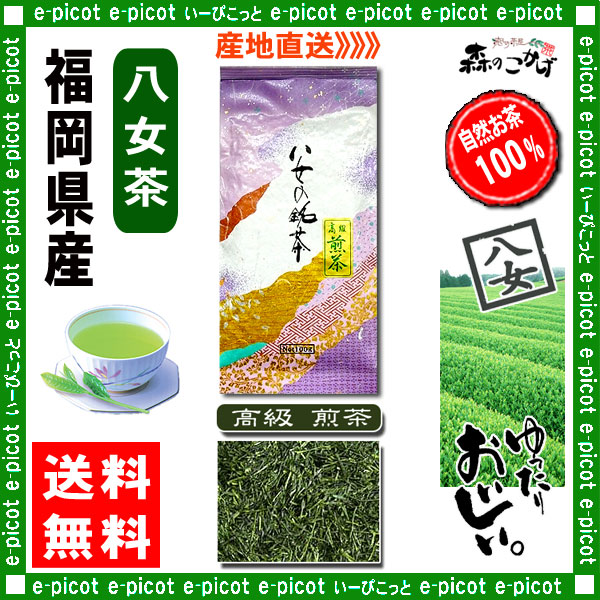 Y【送料無料】 高級 煎茶 (100g)≪八女茶≫ ◇ 福岡県-日本茶 -厳選の緑茶