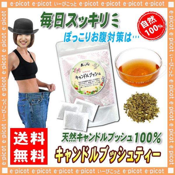B【送料無料】 キャンドルブッシュ (2g×30p) 食物繊維が豊富 ◆ ゴールデンキャンドル ・ ハネセンナ