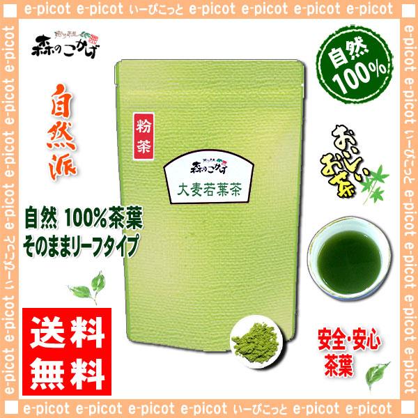 A1【送料無料】 大麦若葉茶 [粉末] (120g 内容量変更)(おおむぎわかば茶)
