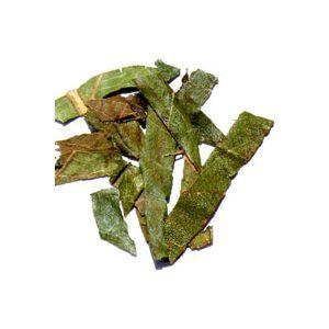【国内産健康茶 】 びわ茶 〔お徳用 1kg〕 ビワ茶 100% ≪枇杷茶≫