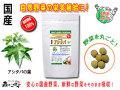 【送料無料】 国産 アシタバ (250mg×180粒) やさいのサプリメント まるごと 自然野菜 (明日葉) あしたば