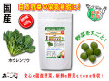 【送料無料】 国産 ホウレンソウ (250mg×180粒) やさいのサプリメント  (ほうれん草) ホウレン草