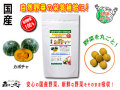 【送料無料】 国産 カボチャ (250mg×180粒) やさいのサプリメント まるごと 自然野菜 (南瓜) かぼちゃ