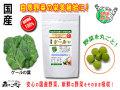 【送料無料】 国産 ケール (250mg×180粒) やさいのサプリメント まるごと 自然野菜 (けーる)