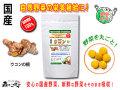 【送料無料】 国産 ウコン (250mg×180粒) やさいのサプリメント まるごと 自然野菜 (うこん)
