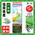 Y【送料無料】 極上 玉露茶 (100g)≪八女茶≫ ◇ 福岡県-日本茶 -厳選の緑茶