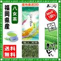 Y【送料無料】 極上 煎茶 ★(100g)×2個セット ≪八女茶≫ ◇ 福岡県-日本茶 -厳選の緑茶