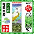 Y【送料無料】 極上 煎茶 白折茶 (茎茶)(100g×2個セット)≪八女茶≫ ◇ 福岡県-日本茶 -厳選の緑茶
