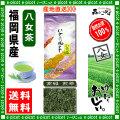 【送料無料】 高級 煎茶 (100g)≪八女茶≫ ◇ 福岡県-日本茶 -厳選の緑茶