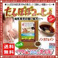 【送料無料】 ノンカフェインのタンポポコーヒー (100g)(たんぽぽ茶) 珈琲