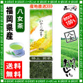 Y【送料無料】 特上 煎茶 ★(100g×2袋セット)≪八女茶≫ ◇ 福岡県-日本茶 -厳選の緑茶