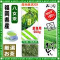 【八女茶 】 吟撰 深蒸茶 〔業務用500g〕 ◆ 福岡県-日本茶 -厳選の緑茶